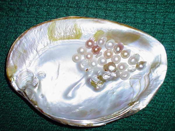 Z takich pereł nie powstanie nigdy cenny naszyjnik, jednak dodadzą one blasku każdej kolekcji.
