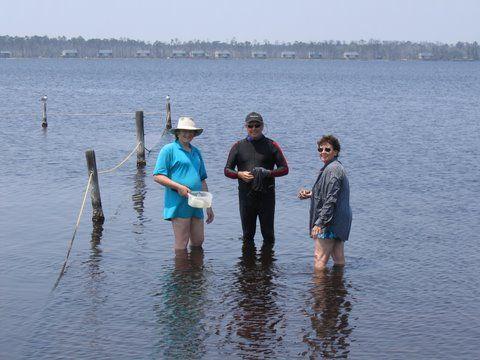 Zajęcia w terenie są stałym punktem programu zjazdów COA. Od lewej ? dr Stephenie Clark z Australii; Gene Everson z Kentucky; oraz Marilyn Northrup z Florydy.