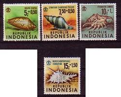 Indonezyjskie znaczki z muszlami do częstych nie należą. Może to dziwić, bo różnorodnych konch chyba tam nie brakuje...