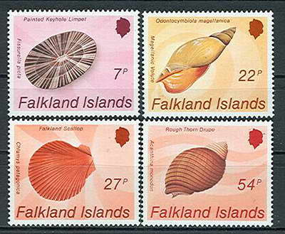 Rzadko spotykane okazy z Wysp Falklandzkich.