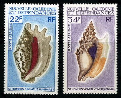 Skrzydelniki z Nowej Kaledonii.