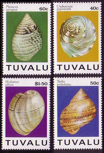 Muszlowe drobiazgi z plaż Tuvalu, /1994/.