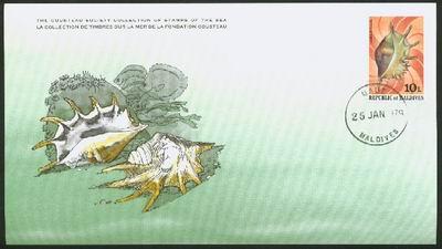 Malediwy, 1979. Szponiatka - Lambis lambis.