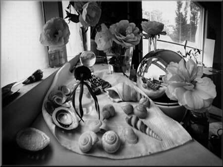 Zachwianie równowagi przestrzennej to jedno z założeń obrazowania w pinhole photography?.