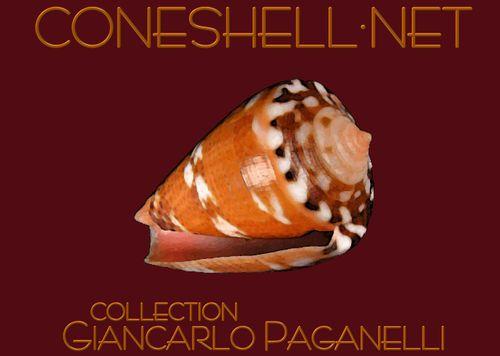 paganelli1