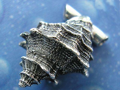 ?Rauhe Felsschnecke? (Thais rugosa). Ag 925; 18,5 mm.